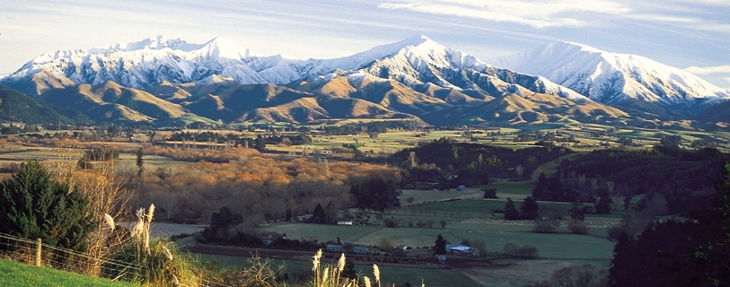 Barker's of Geraldine, Southern Alps Four Peaks